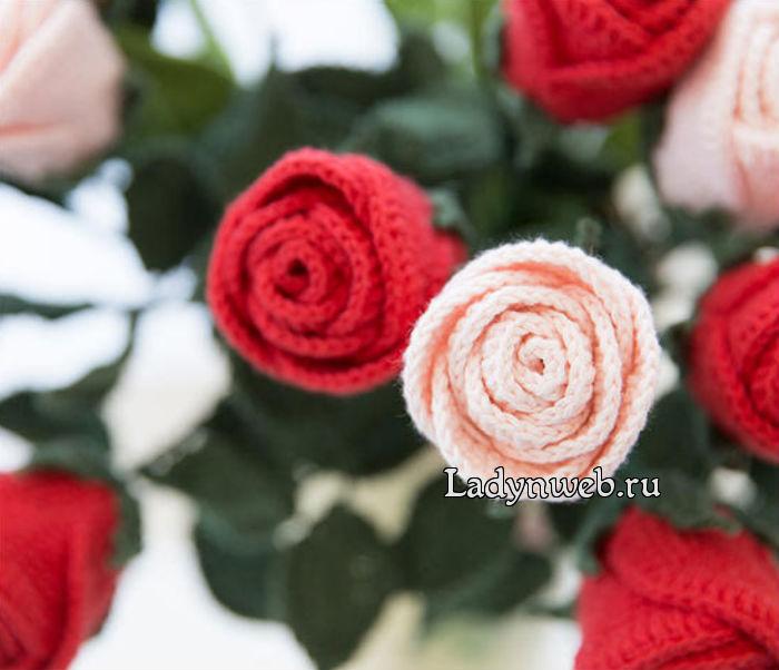 rozy-kryuchkom-sxemy