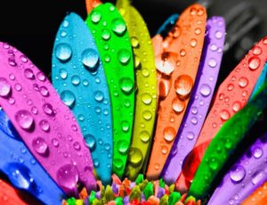 Тест на цветовосприятие