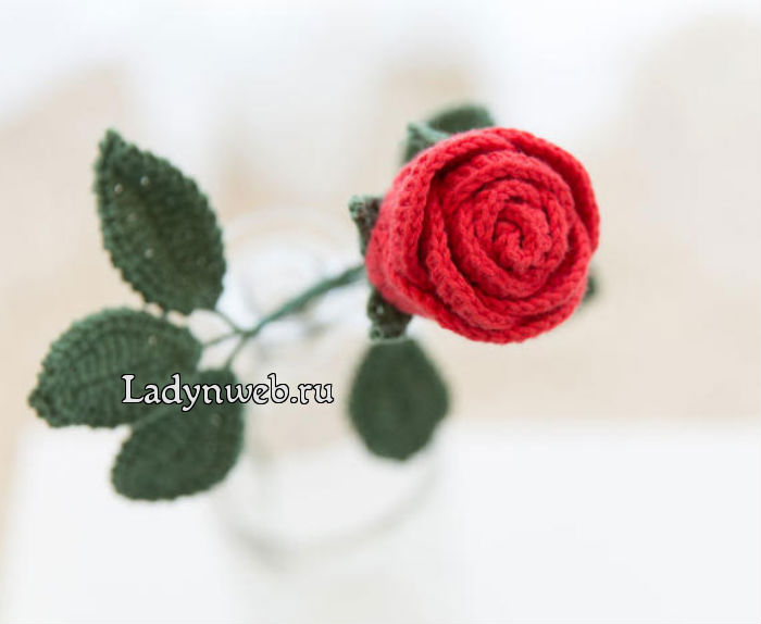 розы крючком схемы